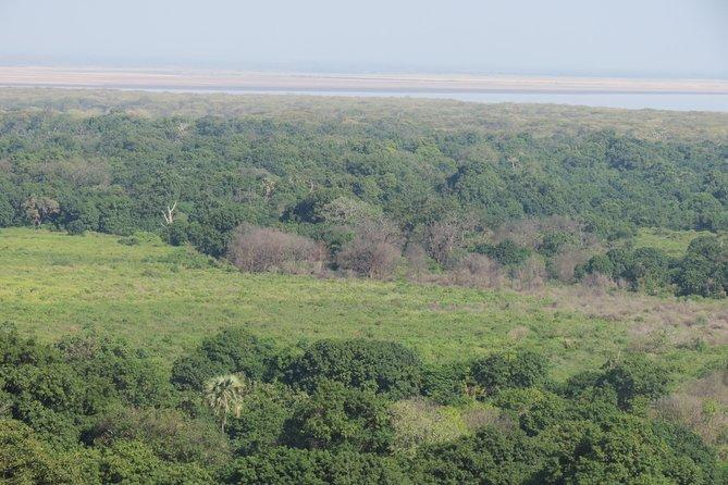 11 days Tarangire NP, Serengeti NP, Ngorongoro Self Drive Safari in Tanzania