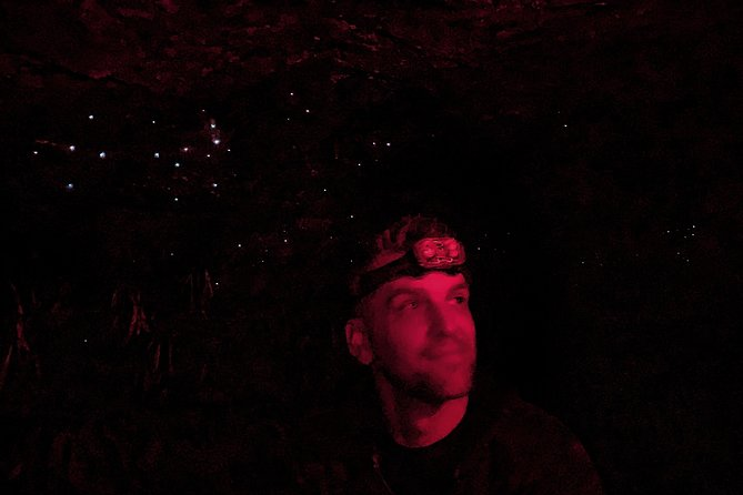 Blue Mountains Hiking Glow worms Cave Wildlife Spotlighting Night Adventure photo 6