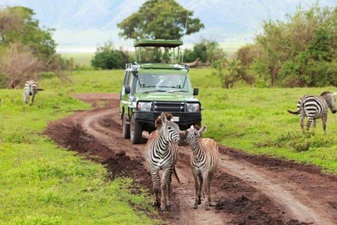 2 Days/1 Night - Selous Game Reserve Safari from Zanzibar or Dar es salaam