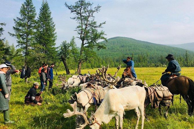Wonders of Northern Mongolia 15 days