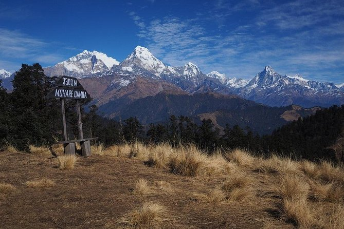 Mohare Hill Private Guided Trek