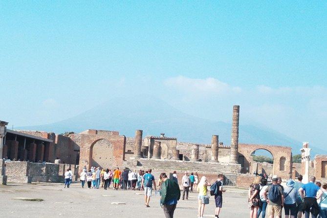 Naples Cruise Port: Pompeii SkipTheLine & Mt Vesuvius Lunch WineTasting Included