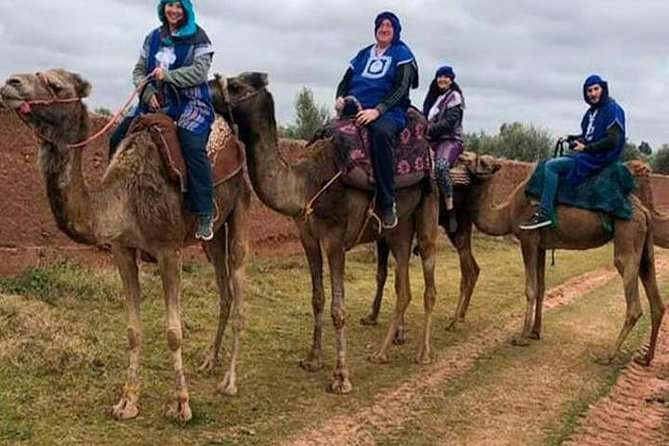 Camel excursion on the road to Ourika from Marrakech