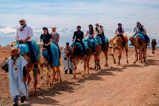 Camel ride on the Atlas Mountains road from Marrakesh photo 2