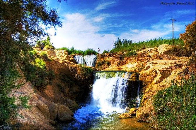 Day Tour To #Valley of Whales and #Wadi El Rayan Water Falls