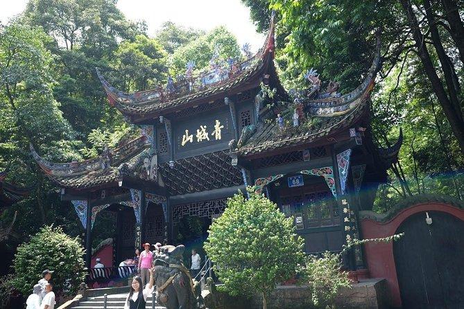 Dujiangyan Panda Base and Mt.Qingcheng one day tour