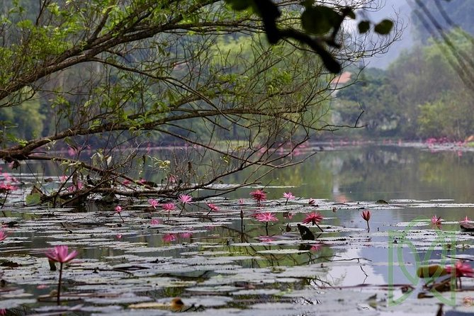 Pu Luong Ninh Binh - The Escape 3 Days Tour: Boat Trip,Infinity Pool & Cycling