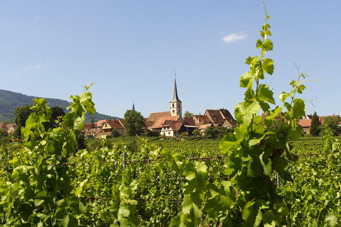Alsace villages from Strasbourg photo 6