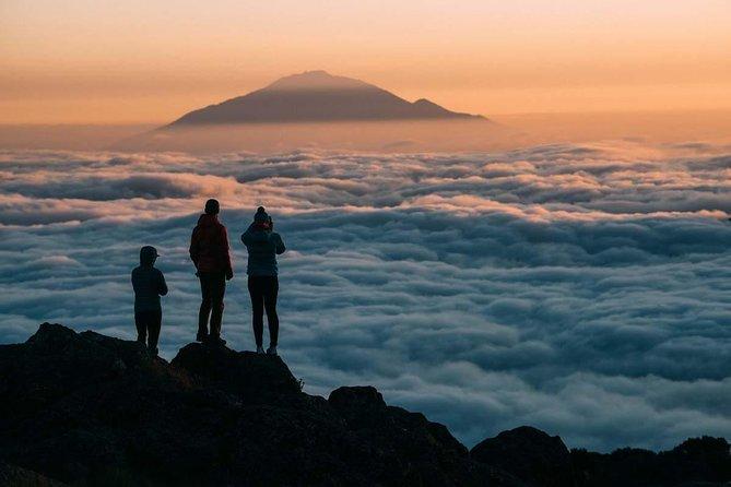 Mt Kilimanjaro Trek; Rongai Route - 6 Days