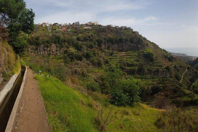 Hiking Tour: Lush Vines & Flowers