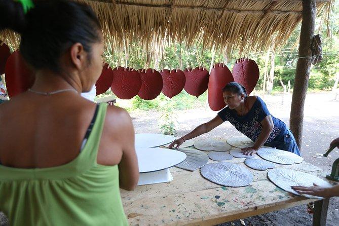 Amazon Arapiuns River Aruã Waterfall Tour