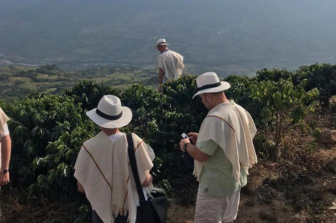 Coffee plantation full-day tour from Medellin private photo 9