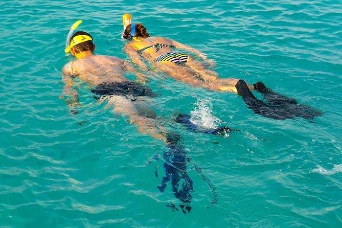 Snorkeling at Mnemba Atoll