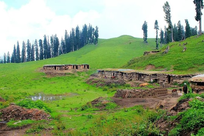 Kashmir Tour Package 03 Nights and 04 Days