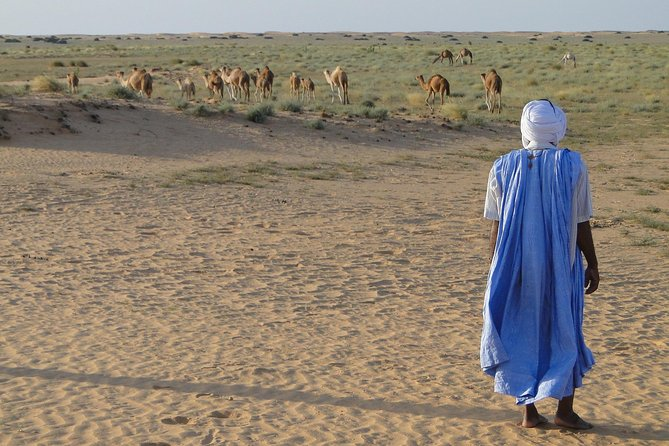15 Days Discover Mauritania Tour