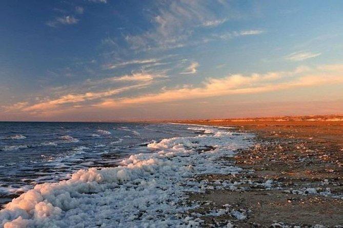 Aral Sea Day Trip: Advanture to Lost Paradise