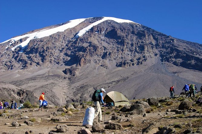 Mt Kilimanjaro trekking (The Northern Circuit Route)
