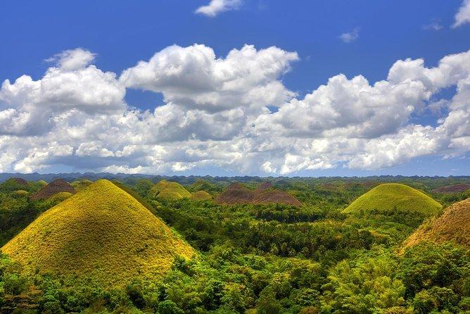 Bohol Countryside Day Tour From Cebu