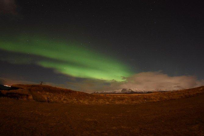 Icelandic Whales & Northern Lights from Reykjavík
