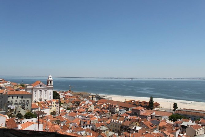 Discover Lisbon by comfy van - Private Half Day Tour photo 2