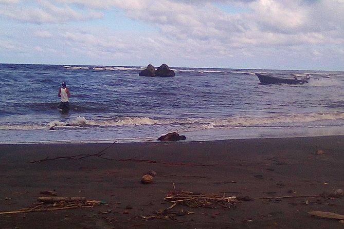 Canoe Tour - Tortuguero Channels. (Aaron Tour's)