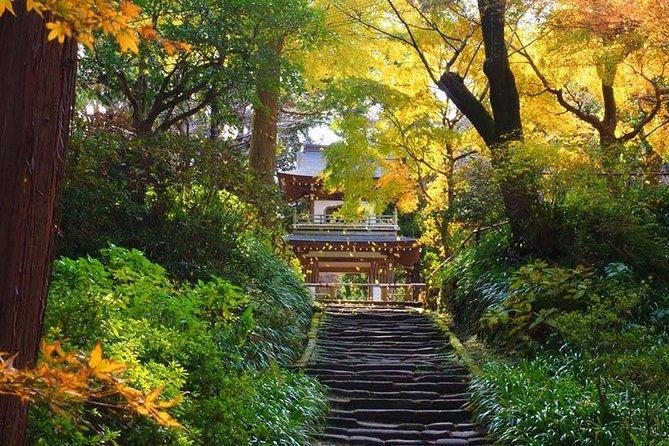 Kamakura Zen Temples and Gardens Private Trip with Nationally-Licensed Guide