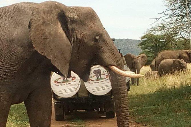 The Great Serengeti Luxury Safari - 6D5N