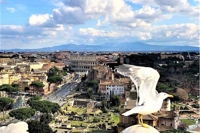 Todos Roma em 1 dia - WOW TOUR - carro de luxo, guia, bilhetes de entrada, almoço incl.