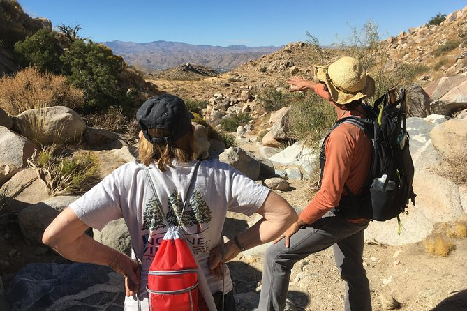 Half-Day Guided Hike in Joshua Tree National Park