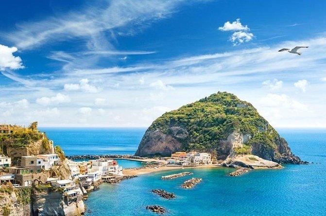 Ischia & Procida Private Boat Tour