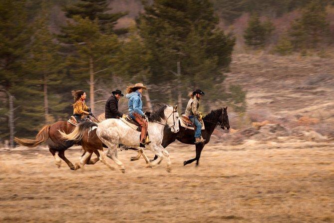 Horse Riding Ranch Experience near Sofia