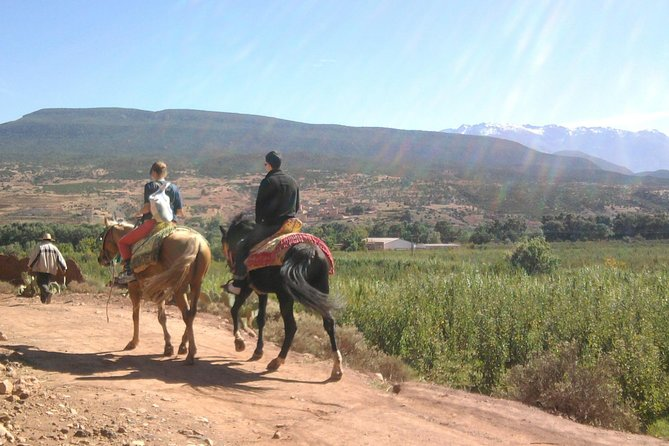 Horseback Riding and Atlas Mountains hike
