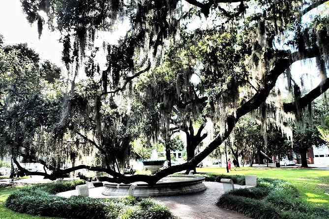 Savannah Scavenger Hunt Adventure