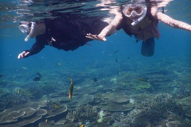 【Okinawa / Motobu Area / Nakijin Area 】Snorkel+Stand-Up Paddling