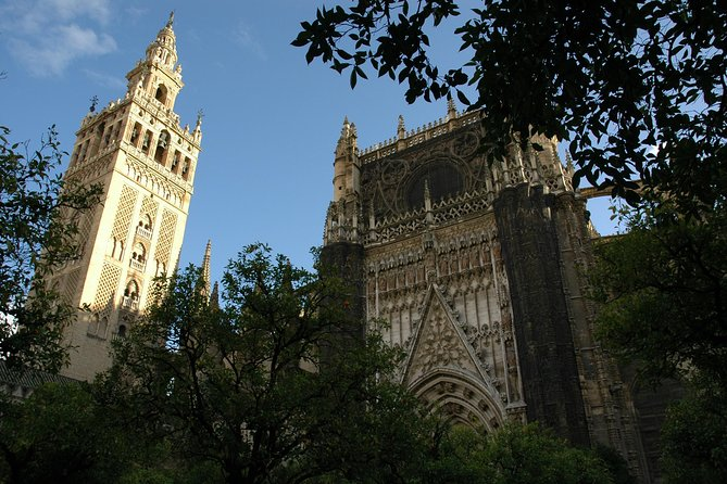 Private guided tour with official guide: Cathedral and Santa Cruz neighborhood