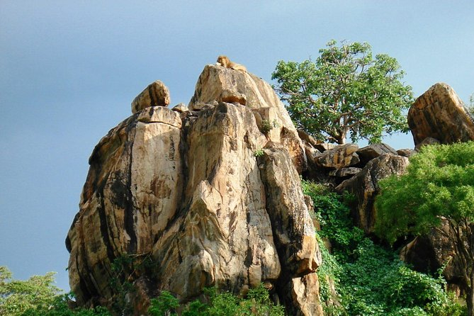 8 Days Trip to Eastern and Northern Uganda