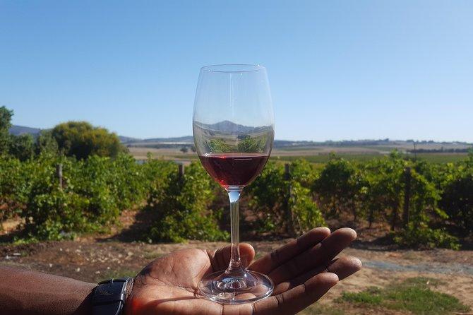 Shared Wine Tasting Tour, Cape Town Stellenbosch Franschoek Paarl Full Day