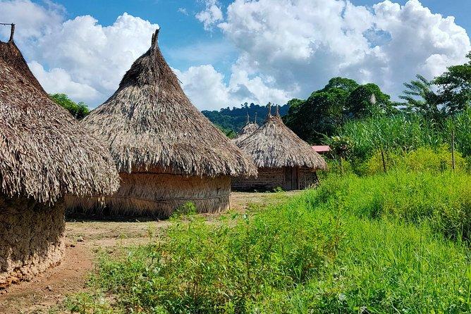 Palomino and Ceviaka Indigenous People Tour