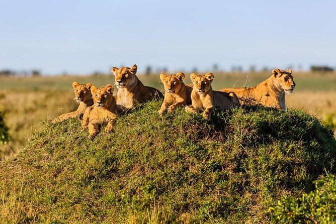 An unforgettable Kenyan Adventure