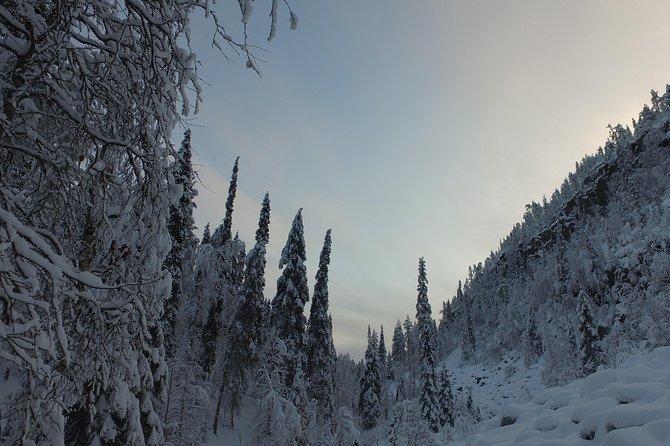 Frozen waterfalls hiking tour