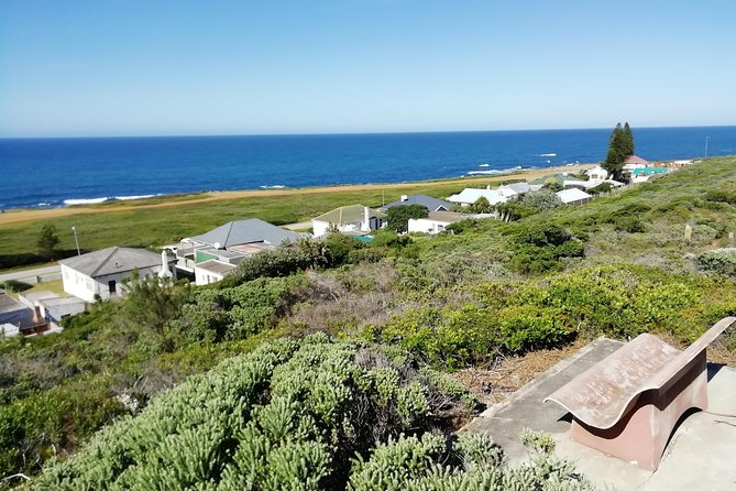 Transfers - Port Elizabeth Airport; Local Hotels and BnB up to 50km