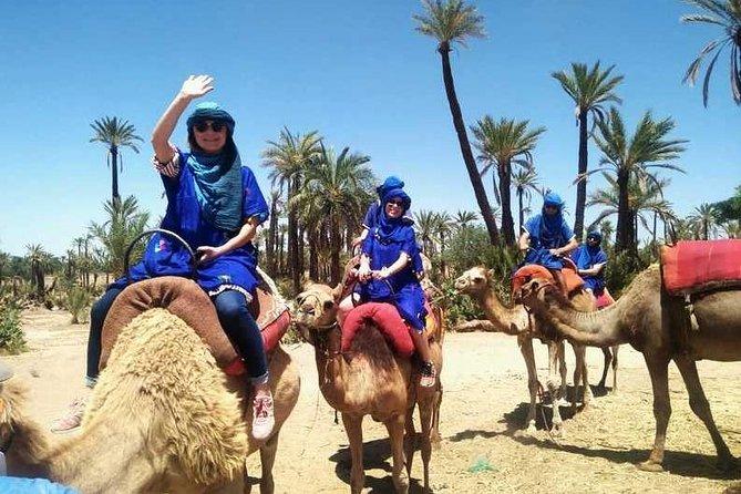 Palmeraie Camel Ride Experience