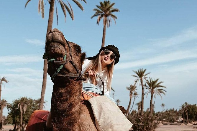 3-Hours Marrakech Palm Grove Camel Riding Activity