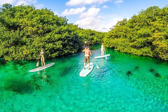 Paddleboard & Snorkel In A Beautiful Cenote + Photos + Our Favorite Tacos