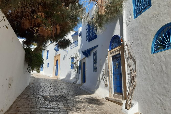 1 Day Excursion Tunis Carthage and Sidi Bousaid from Hammamet