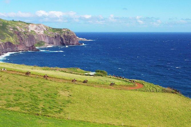Maui Horseback-Riding Tour