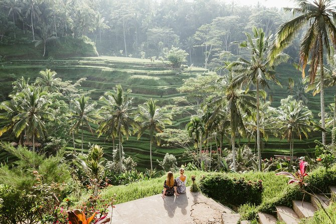 Private Full-Day Tour in Ubud with Bali Swing Adventure