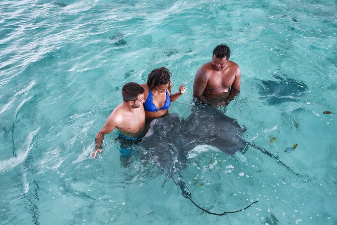 Bora Bora Eco Snorkel Cruise Including Snorkeling with Sharks and Stingrays