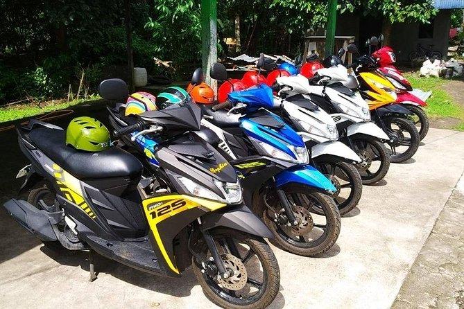 Cebu Transport - Car-Van-MotorBike