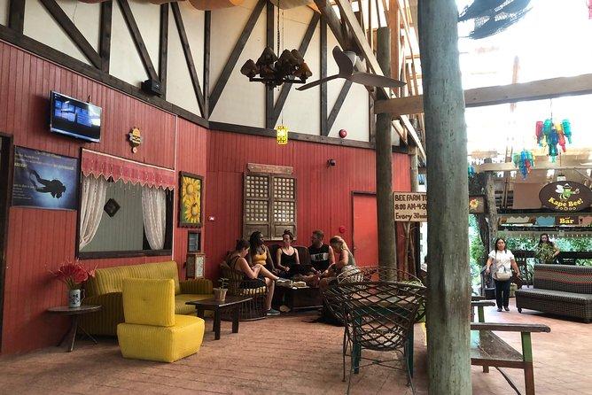 Half-Day Panglao Island Tour